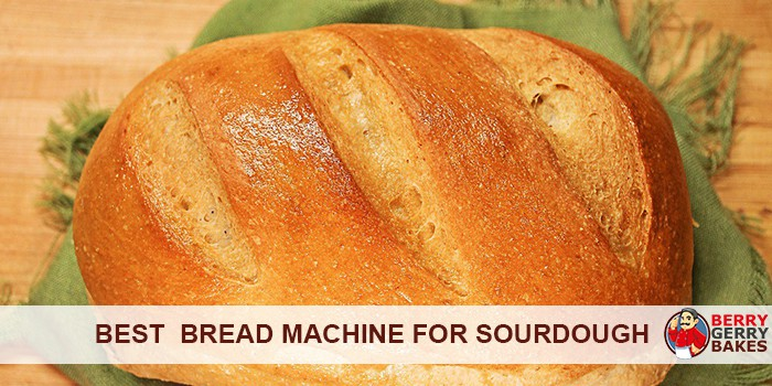 best bread machine for sourdough