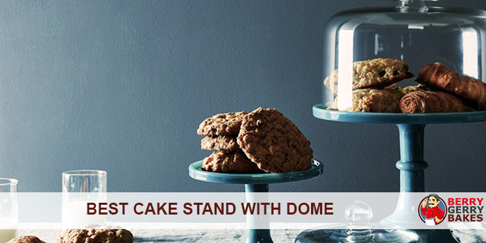 best cake stand with dome
