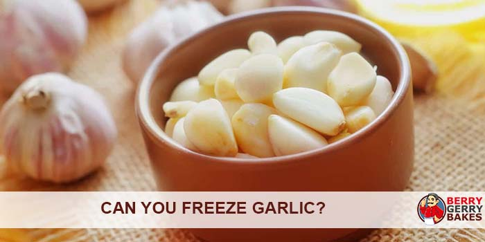 Can You Freeze Garlic? Learn How to Preserve Garlic 1