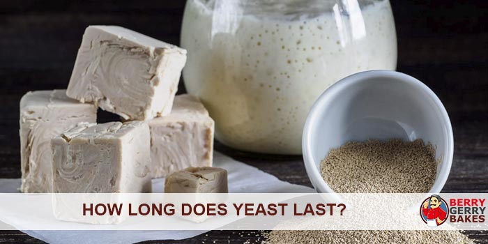 How Long Does Yeast Last?