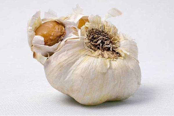 Can You Freeze Garlic? Learn How to Preserve Garlic 2