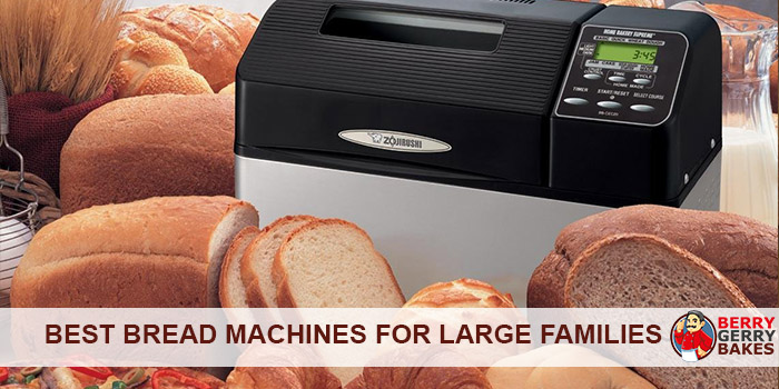 BEST BREAD MACHINES FOR LARGE FAMILIES