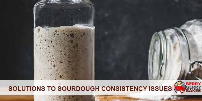 5 Solutions to Sourdough Starter Consistency Issues 1