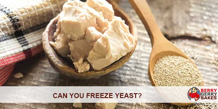 Can You Freeze Yeast? 1
