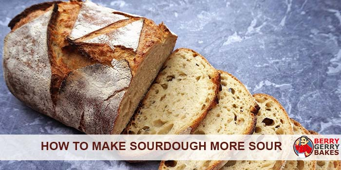How To Make Sourdough Bread More (or Less) Sour 1